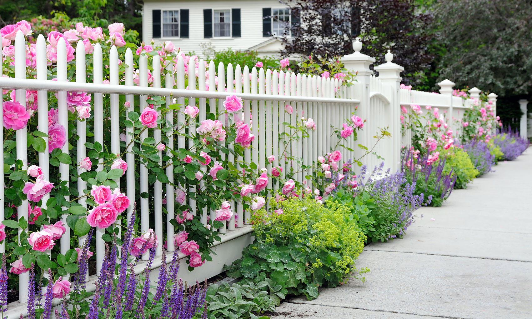 White vinyl fence with flowers